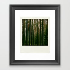 Pola Tree 4 Framed Art Print