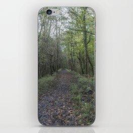 The Old Railway Line 2 iPhone Skin