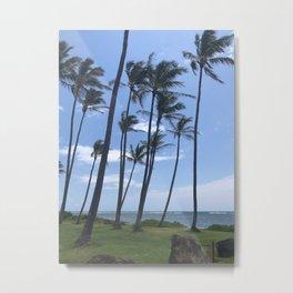 Coconut Trees - Kaua'i, Hawai'i Metal Print