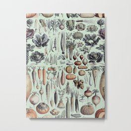 Science Farm Metal Print