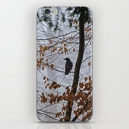 Crow in the mist iPhone Skin