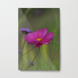 Purple jewel box Metal Print