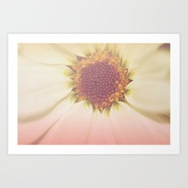 Bee's Perspective Art Print
