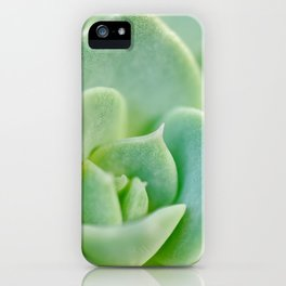 Sempervivum close-up shot iPhone Case