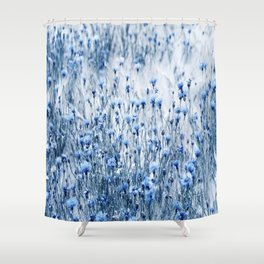 Cornflowers in summer time Shower Curtain
