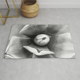 Cactus Succulent // Black and White Close up Desert Plant High Quality Photograph Rug