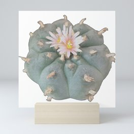 Peyote Cacti Mini Art Print