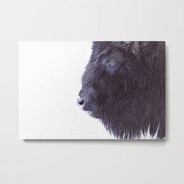 BLACK BUFFALO Metal Print