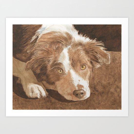 Border Collie Puppy Wren Art Print