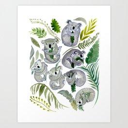 Koala Leef Art Print
