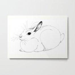 White Rabbit Metal Print