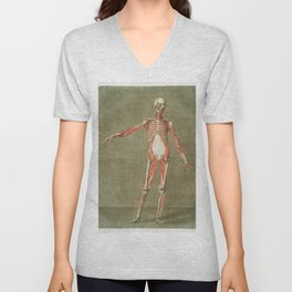 Grey Rabbit (Lepus Sylvaticus) from the viviparous quadrupeds of North America (1845) illustrated by Unisex V-Neck
