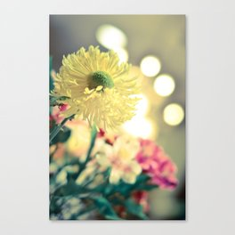 Flowery light Canvas Print