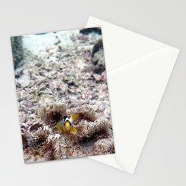 Clownfish Stationery Cards