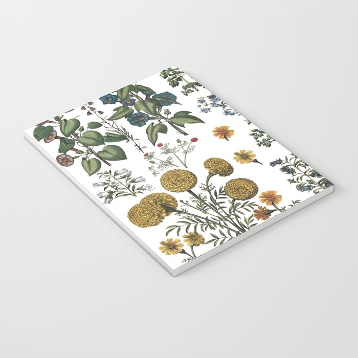 plants collection Notebook