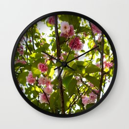 Under Pink Boughs Wall Clock