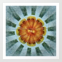 Bacterially Pattern Flower  ID:16165-042044-49241 Art Print