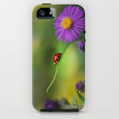 Ladybug Single In Search Tough Case iPhone (5, 5s)