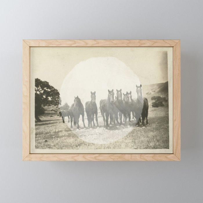 Band of Horses - White Framed Mini Art Print