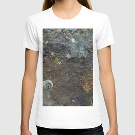 Natural Coastal Rock Texture with Lichen and Moss T-shirt
