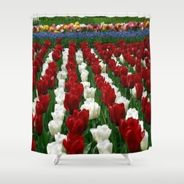 colourfull_roses Shower Curtain
