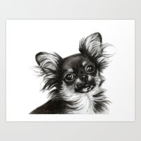 chihuahua Art Prints featuring Chihuahua by Danguole Serstinskaja