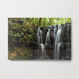 Natural Motion Metal Print