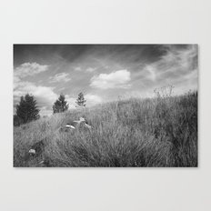 BitterRoot Phone Booth Canvas Print