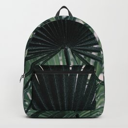 Fan Palms Galore - Tropical Nature Photography Backpack
