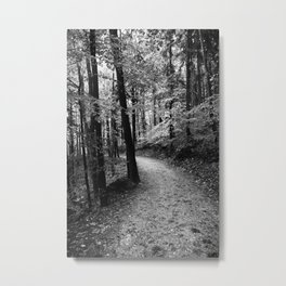 Forest black and white 3 Metal Print