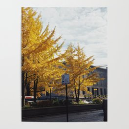 Brightest fall Poster