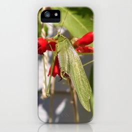 Katydid on Scarlet Runner Beans iPhone Case