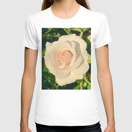 Lighten T-shirt