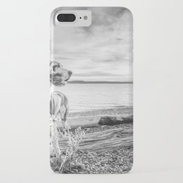 Harlequin Beach Sunset iPhone Case