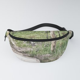 Rustic water crossing Fanny Pack