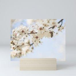 Pollinating an Apple Tree Mini Art Print