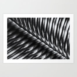 Black and white abstract lines and curves Art Print