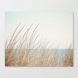 Beach Grass Photography, Calming Coastal Photo Print, Relaxing Beach House Photograph, Seaside Photo Canvas Print