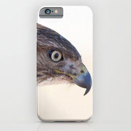 Watercolor Bird, Red-tailed Hawk 08, Keenesburg, Colorado, Why the Eagle Eye? iPhone Case