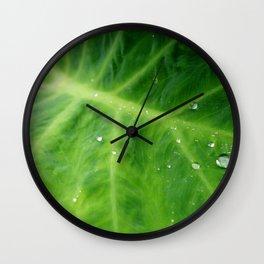waihua Wall Clock