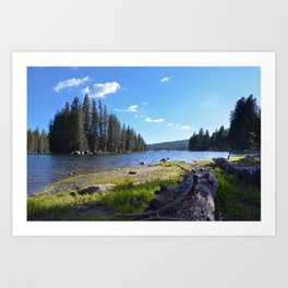 geese at lake alpine Art Print