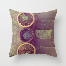 Three Pots Throw Pillow