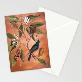 Blue Grosbeak with Sweetbay Magnolia, Vintage Natural History and Botanical Stationery Cards
