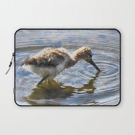 American Avocet Chick Laptop Sleeve