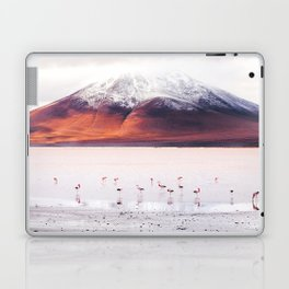 Bolivian Flamingos Laptop & iPad Skin