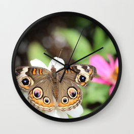 Beautiful Buckeye Butterfly Wall Clock