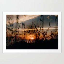 Muriwai Sunset Art Print