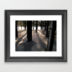 Winter's Promise Framed Art Print