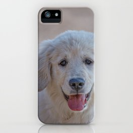 Young Golden Retriever breed dog with light fur stares into your eyes iPhone Case