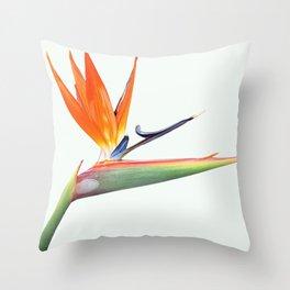 Bird Of Paradise II Throw Pillow